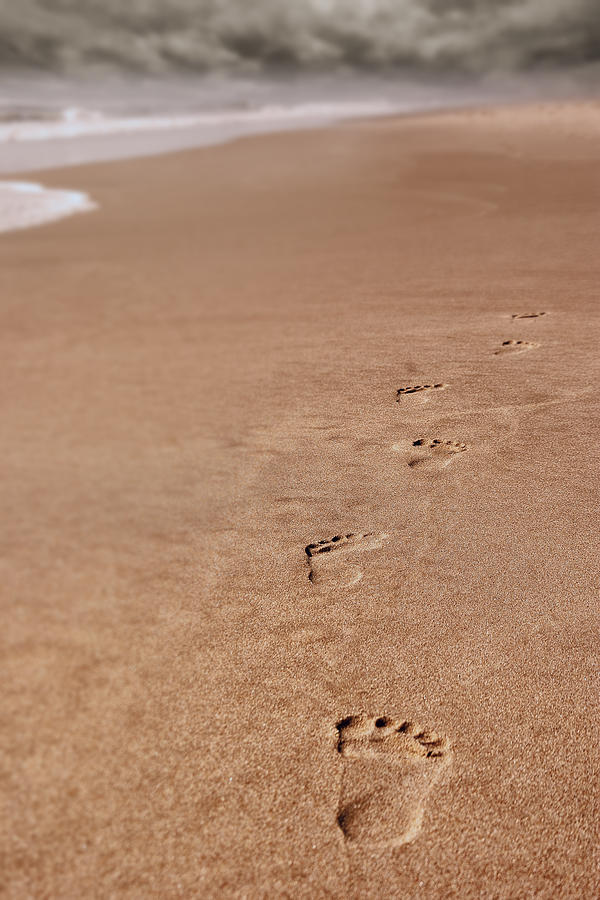 Footprints on the Beach by Greg Collins