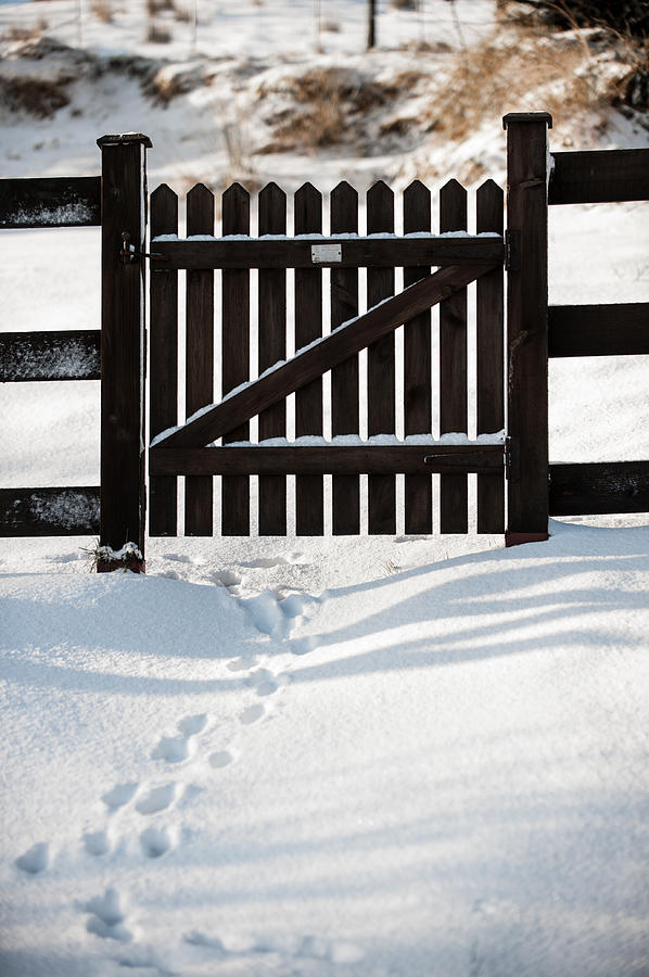 Footprints Through The Gate Photograph