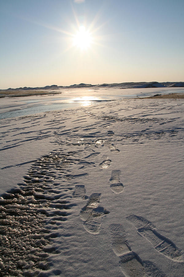 Vertical Photograph - Footsteps In Frozen Landscape by Christopher Purcell
