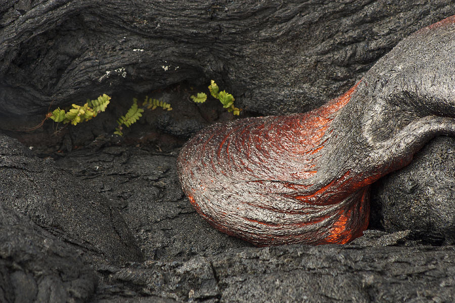 Lava Photograph - For A Short Time by Allen Lefever