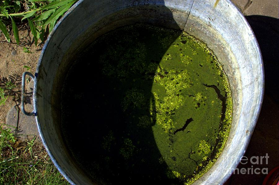 Mash Photograph - For Dirty Photos   Garden Mash by The Stone Age