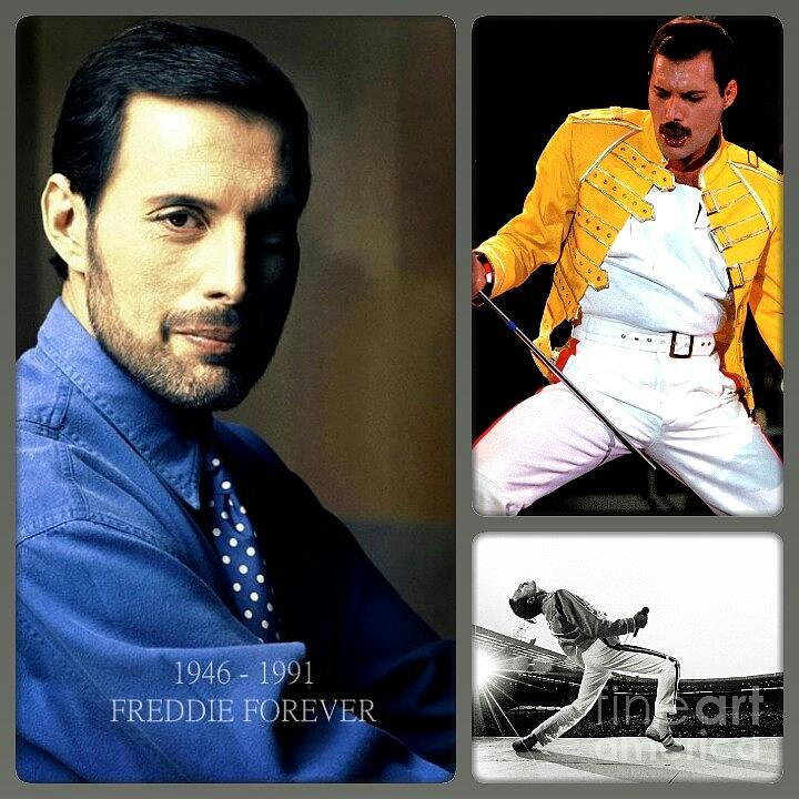 For Freddie Photograph