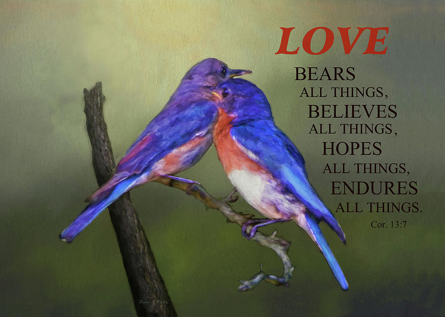 Bluebirds Photograph - For Love Of Bluebirds And Scripture by Sandi OReilly