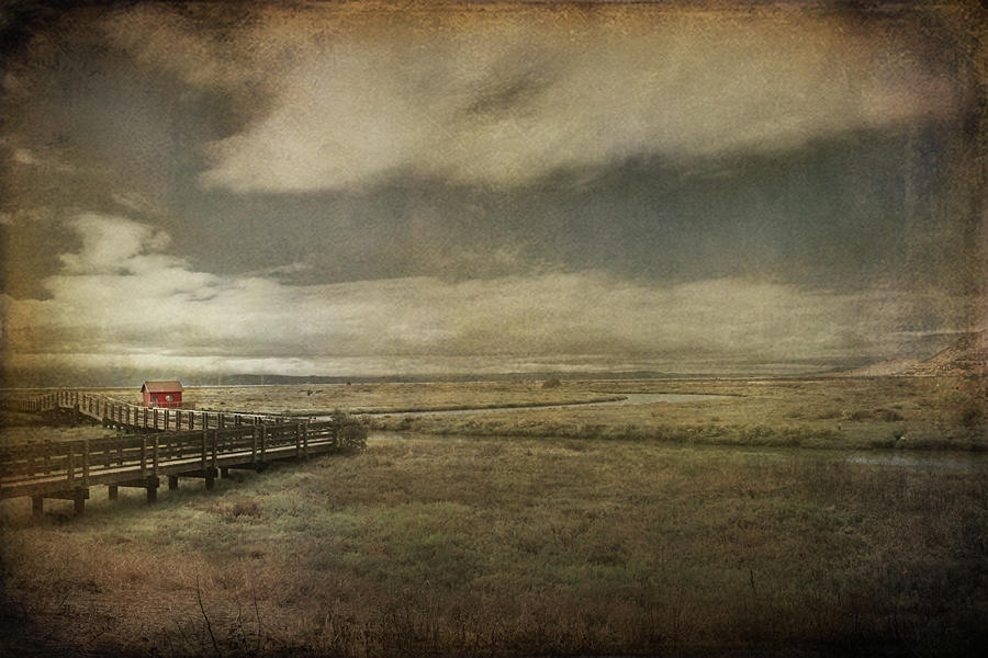 Landscape Photograph - For The Lonely Souls by Laurie Search