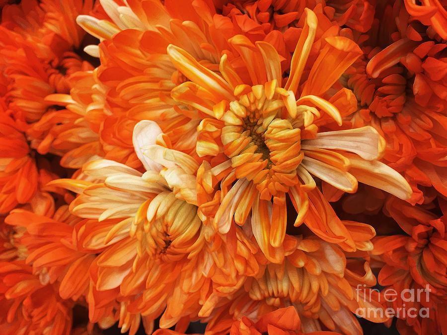 For The Next Orange ... by Frank Merrem