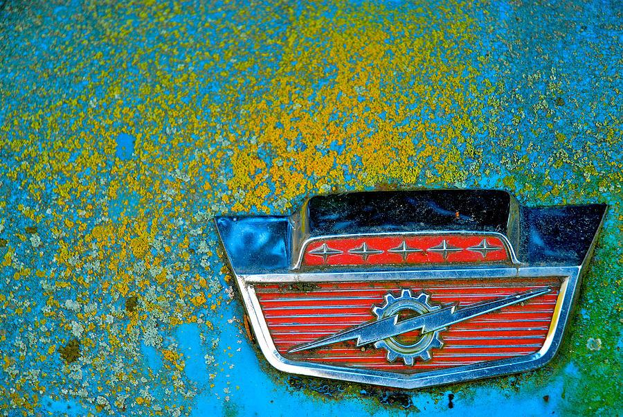 Lichen Photograph - Ford Logo by Craig Perry-Ollila