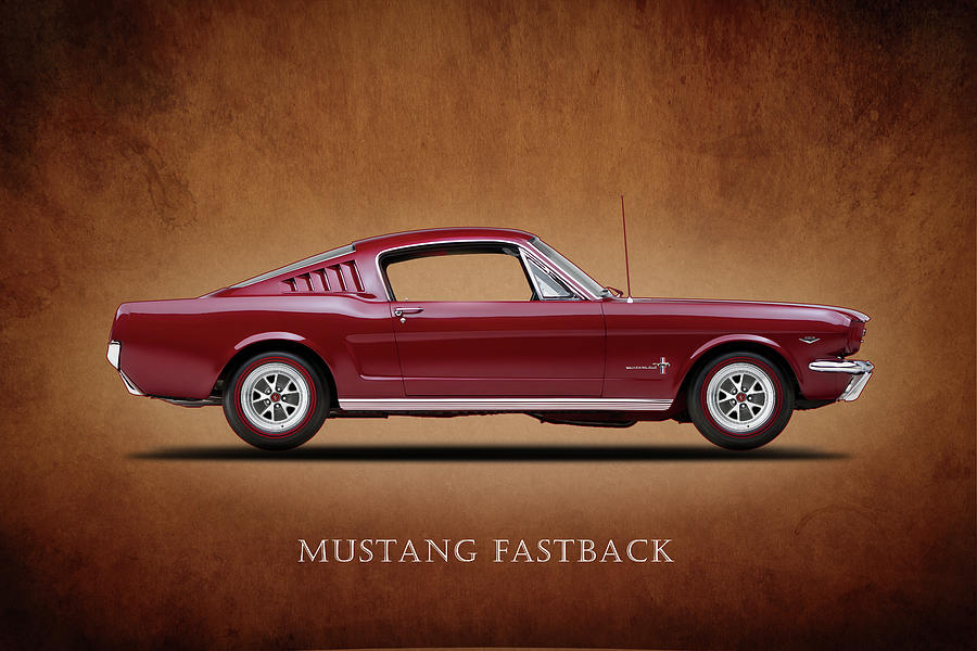 Ford Mustang Fastback 1965 Photograph - Ford Mustang Fastback 1965 by Mark Rogan