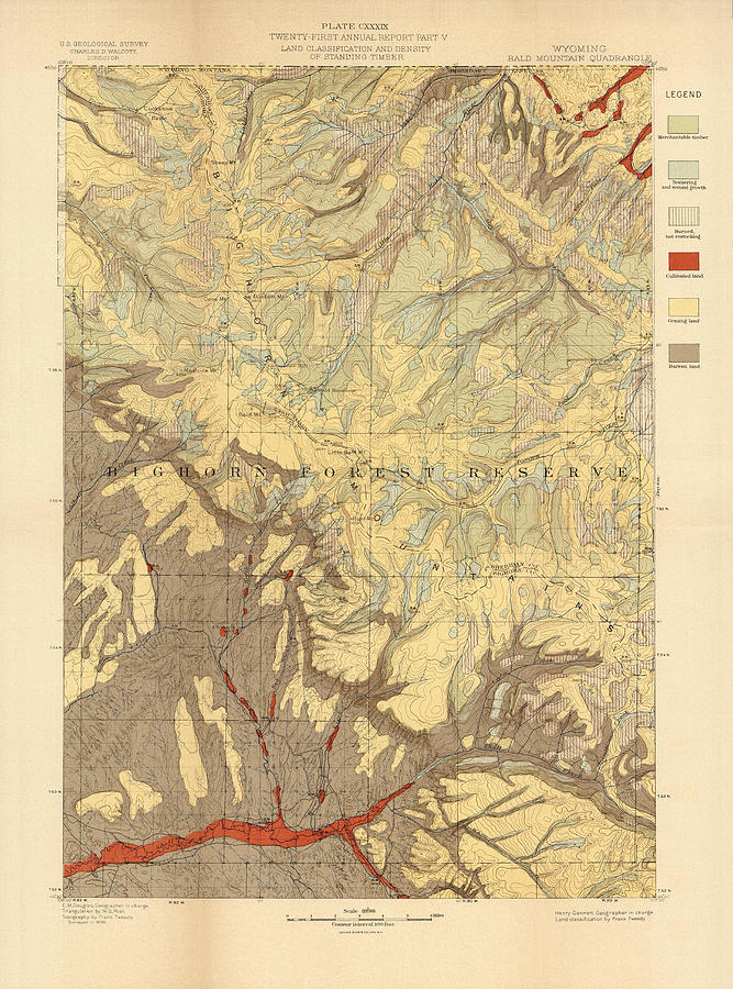 Forest Cover Map 1886-87 - Bald Mountain Quadrangle - Wyoming - Geological Map Drawing