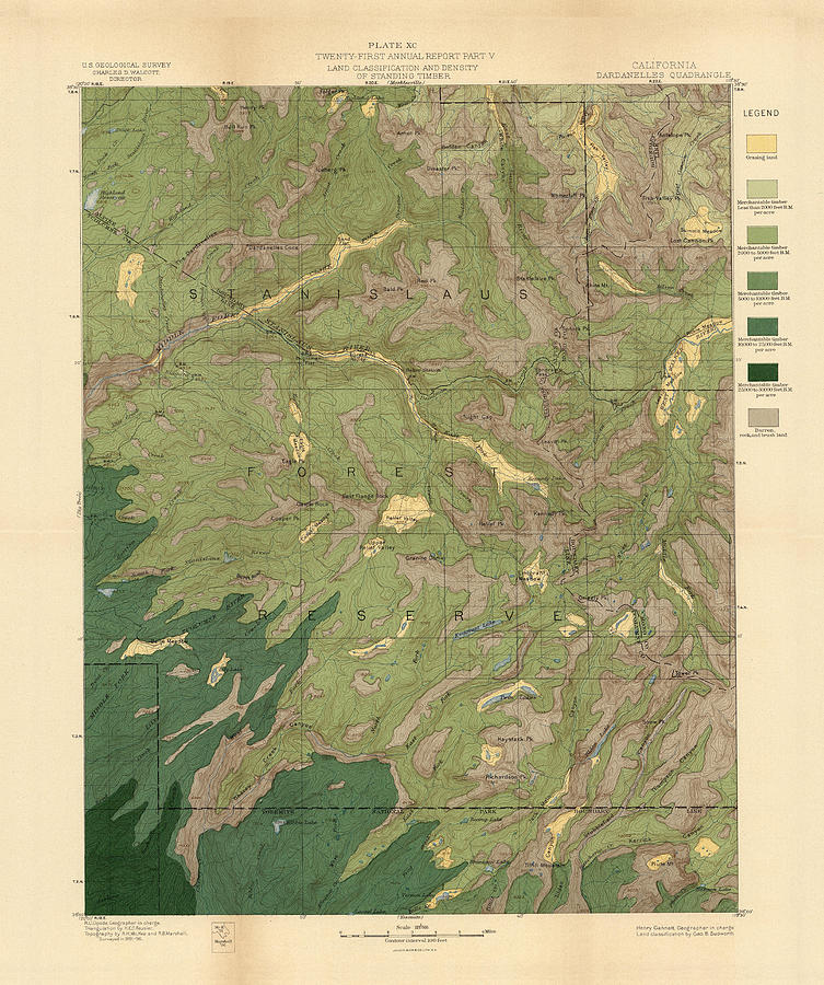 Forest Cover Map 1886-87 - Dardanelles Quadrangle - California - Geological Map Drawing