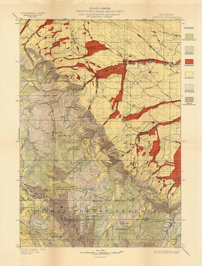 Forest Cover Map 1886-87 - Dayton Quadrangle - Wyoming - Geological Map Drawing