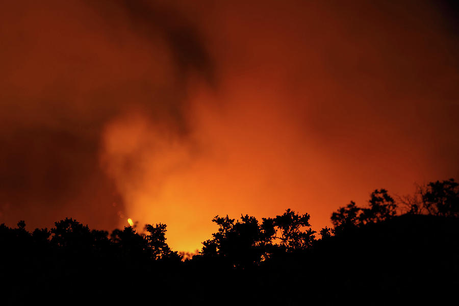 Forest Fire Photograph - Forest Fire by Dan Pearce
