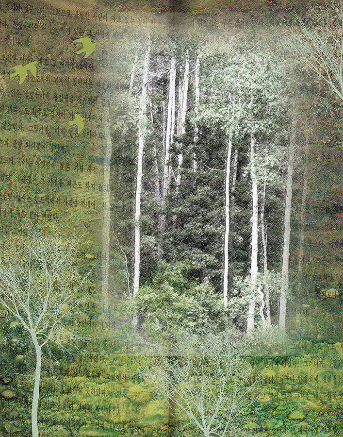 Collage Digital Art - Forest For The Trees by Nadine Berg