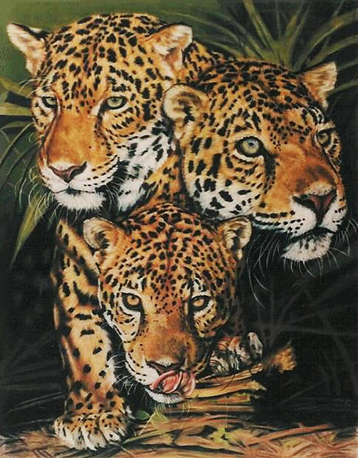 Jaguar Pastel - Forest Jewels by Barbara Keith