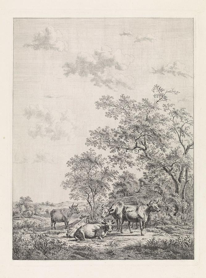 Forest Landscape With Six Cows, Pieter Janson, 1775 - 1901 Painting