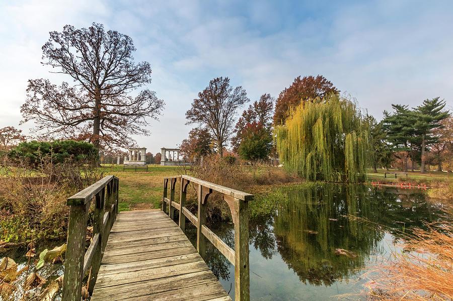 Forest Park Photograph - Forest Park Columns 2 by Steven Jones
