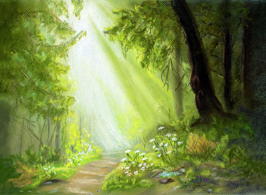 Forest Path by Dorothy Riley