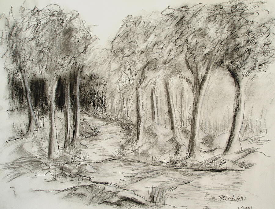 Forest river drawing by miroslaw chelchowski for Forest scene drawing