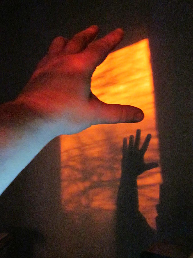 Fingers Photograph - Forever Living Hands by Guy Ricketts