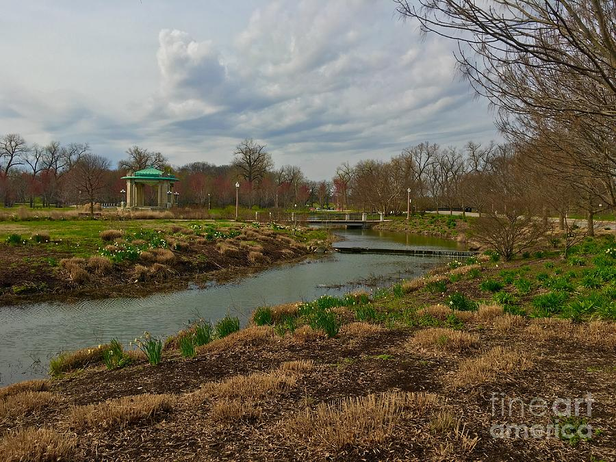 Forever views at Forest Park by Debbie Fenelon