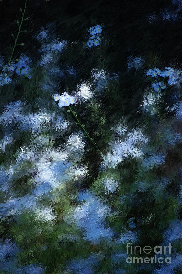Abstract Digital Art - Forget Me Not by David Lane