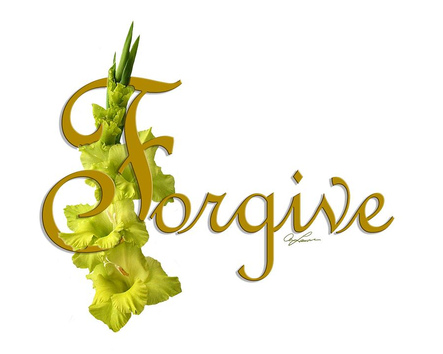 Forgive by Ann Lauwers