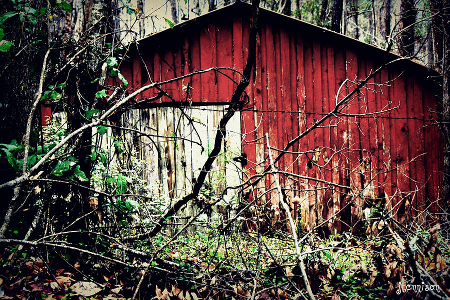 Barn Photograph - Forgotten Barn by Jill Tennison