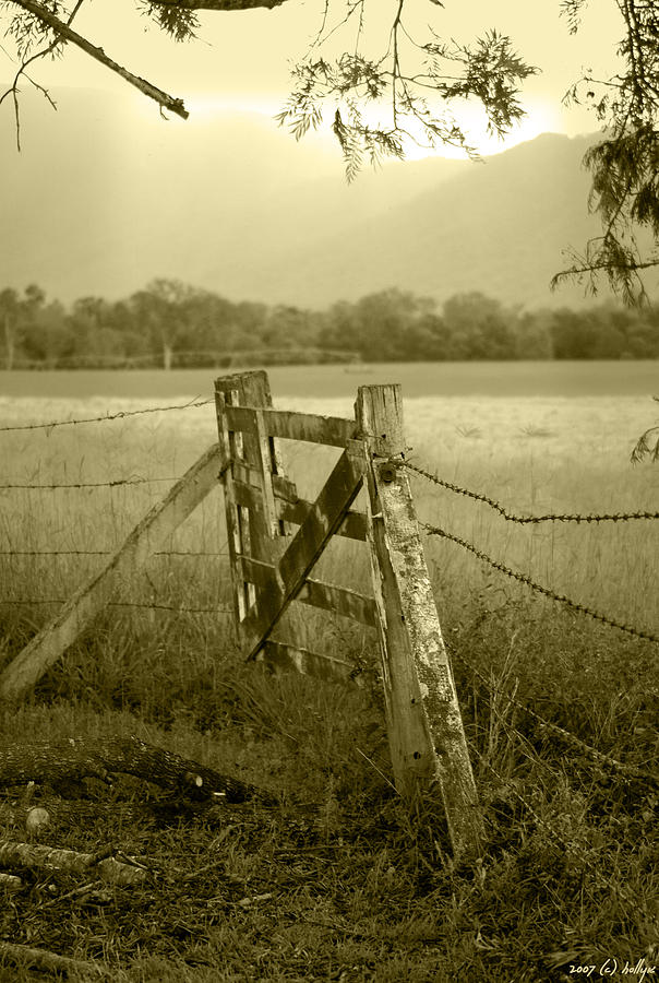 Gate Photograph - Forgotten Fields by Holly Kempe