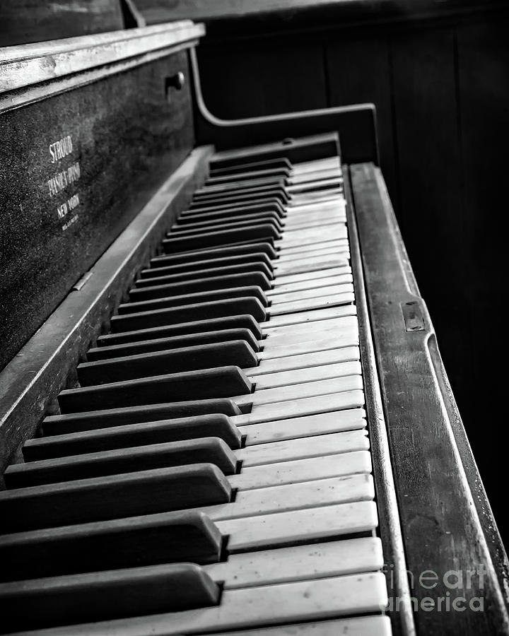 Piano Photograph - Forgotten Ivory by Kevin Anderson