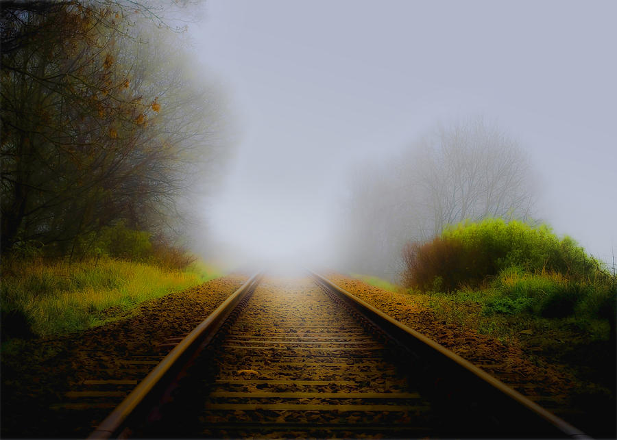 Branches Photograph - Forgotten Railway Track by Svetlana Sewell