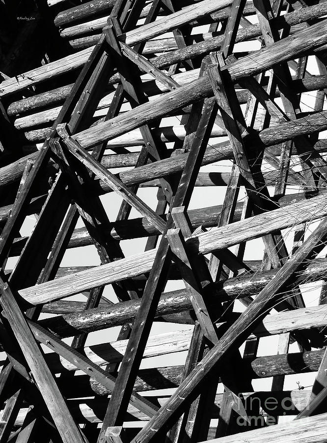 Abstract Photograph - Form And Function 2 by Xueling Zou