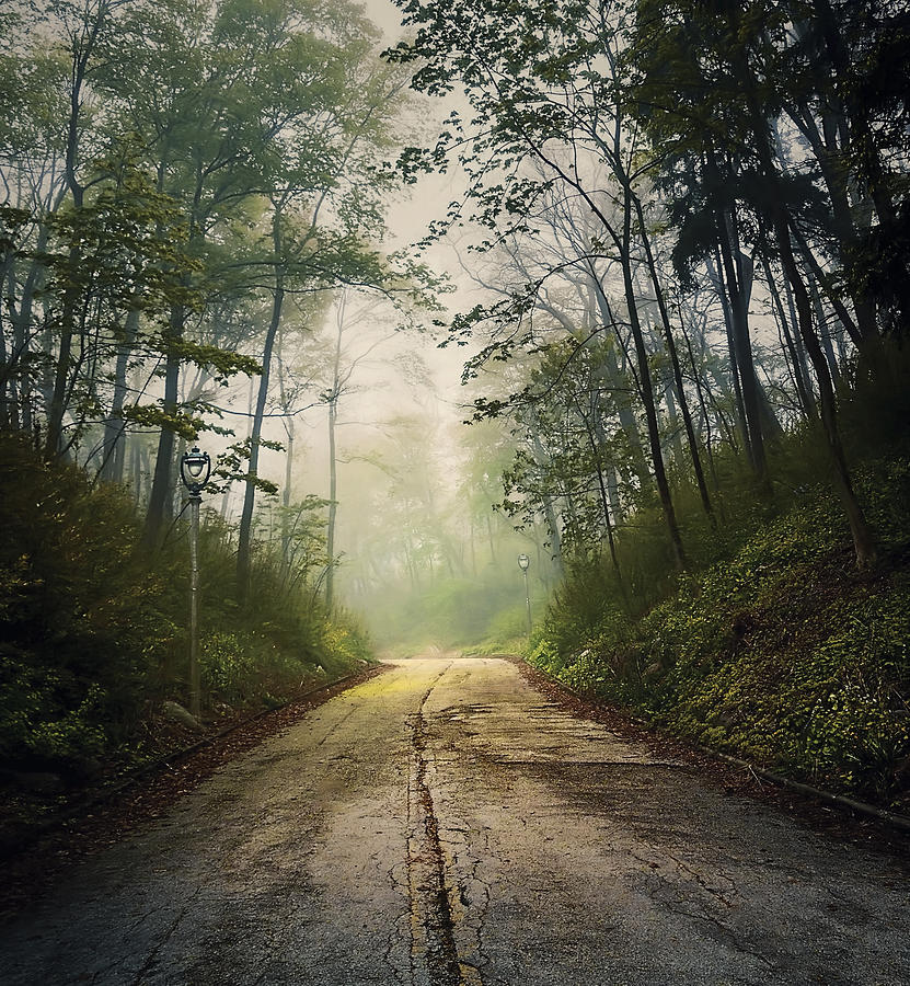 Forsaken Road Photograph