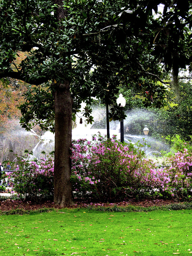 Graphic Design Digital Art - Forsyth Park Fountain in theh Park by Poster Book