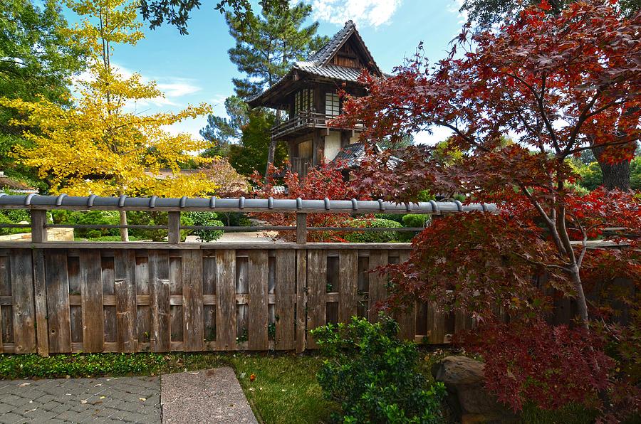Fort Worth Japanese Gardens 2771a by Ricardo J Ruiz de Porras