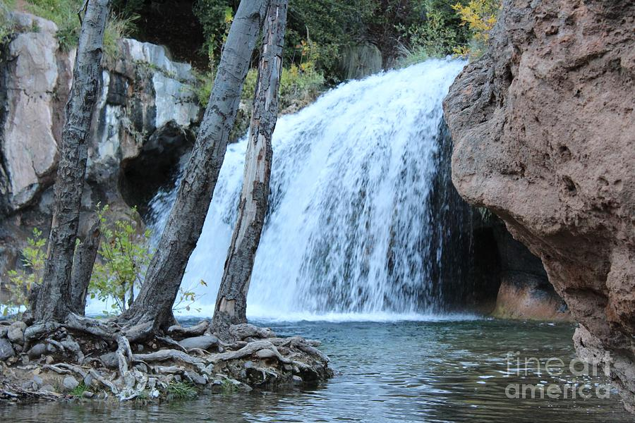Fossil Creek Photograph by Melissa Zimmer
