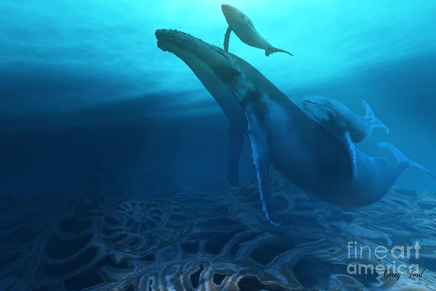 Whale Painting - Fossils by Corey Ford