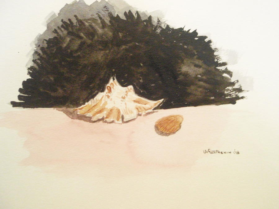 Shell Painting - Found by Robby  Entrekin