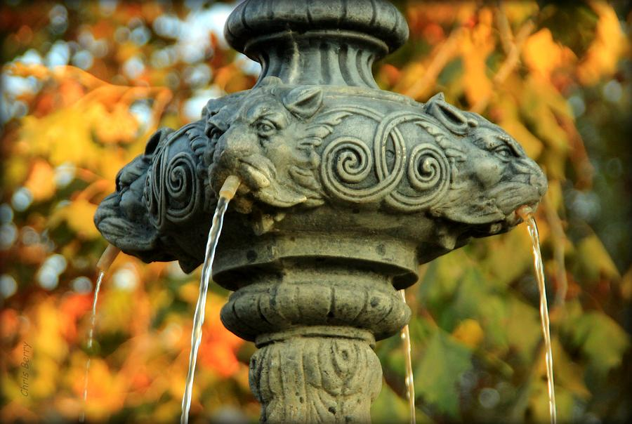 Fountain Photograph - Fountain At Union Park by Chris Berry