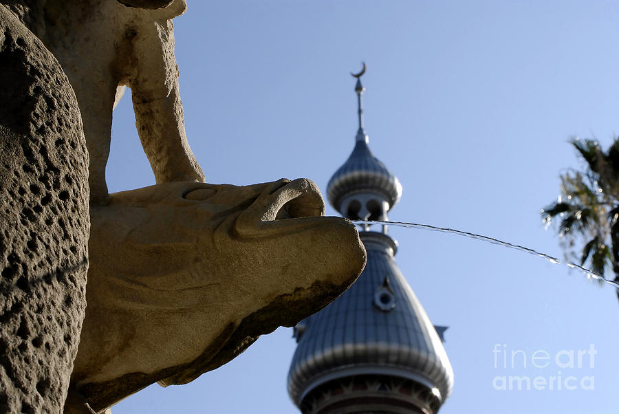 University Of Tampa Photograph - Fountain At Ut by David Lee Thompson
