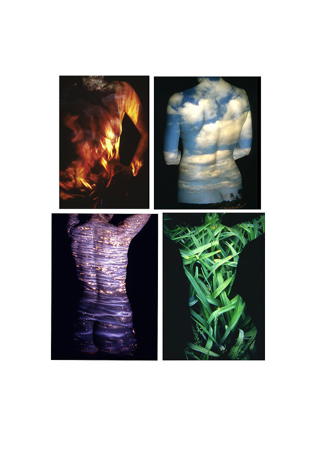 Nature Fusion Photograph - Four Elements by Arla Patch