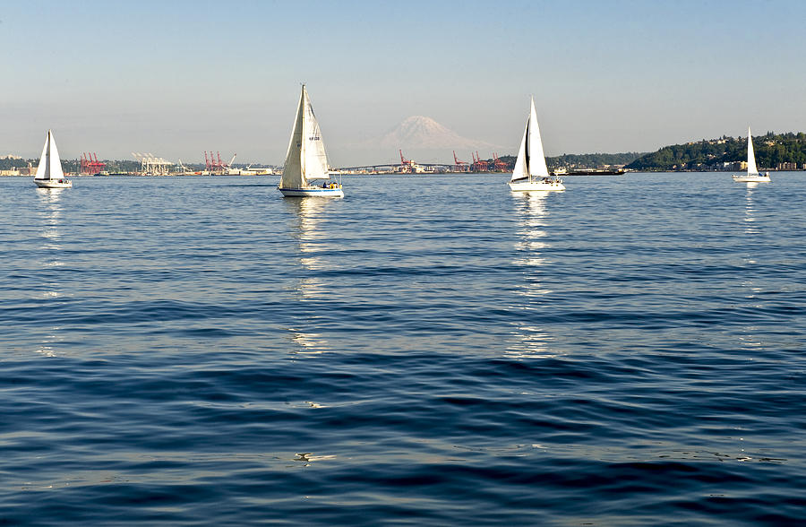 Seattle Photograph - Four Sailboats by Tom Dowd