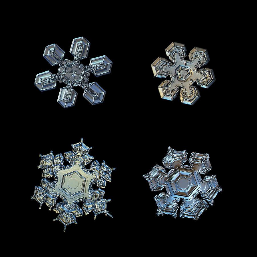 Snowflake Photograph - Four Snowflakes On Black 2 by Alexey Kljatov