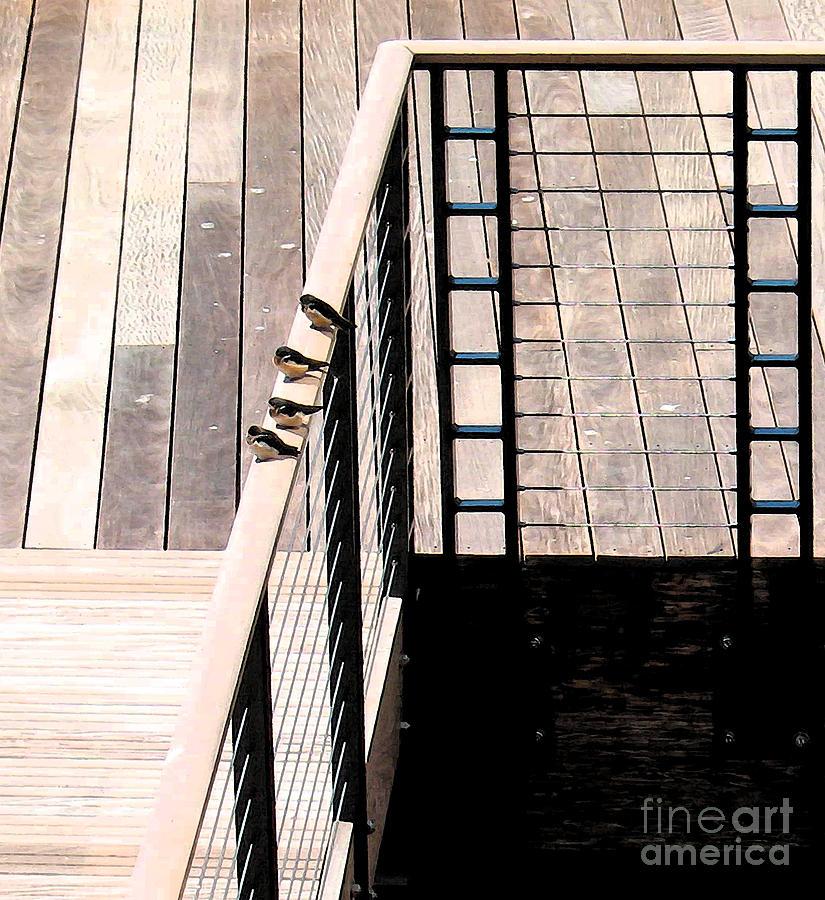Bird Photograph - Four Swallows by Gary Everson