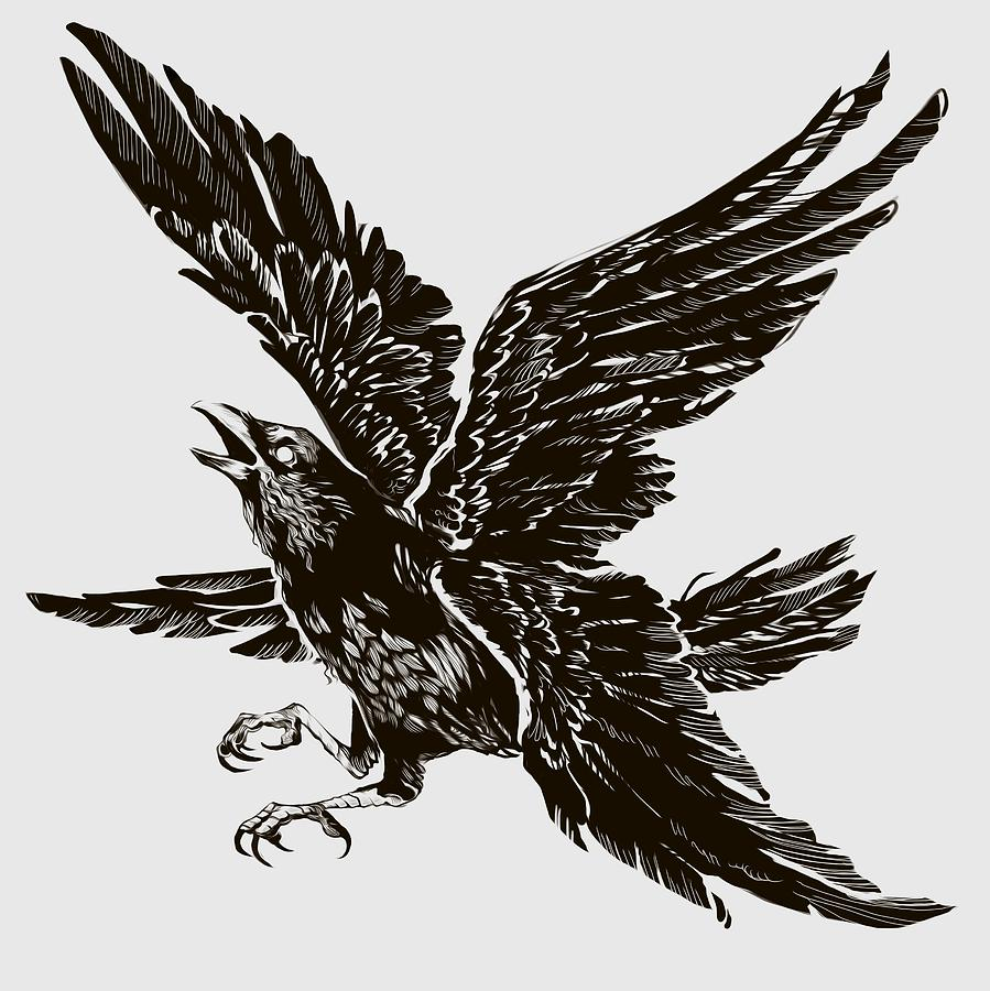 Bird Digital Art - Four Wings by Ellan Suder