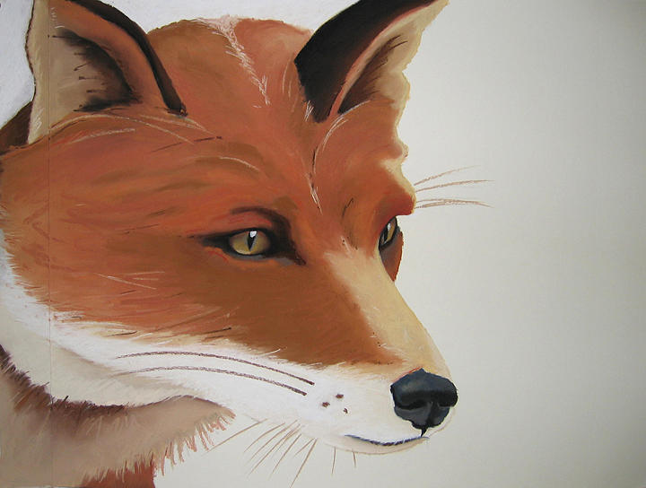 Fox Painting - Fox by Brenda Wolf