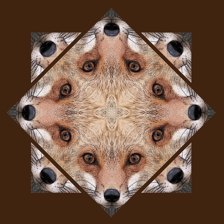 Kaleidoscope Photograph - Fox Close Up by Rhoda Gerig