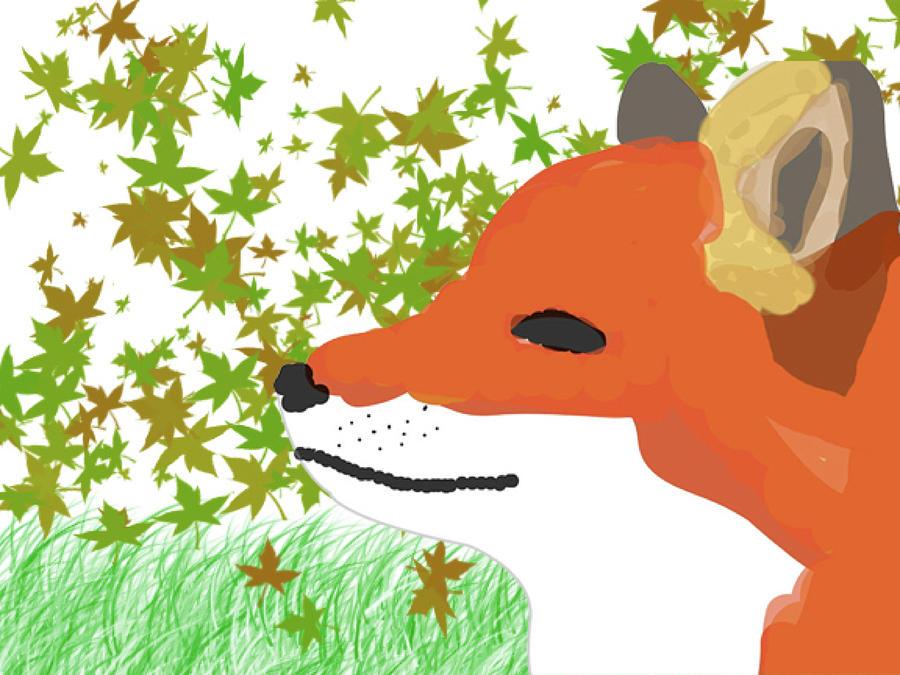 Fox in Fall by Caroline Elgin