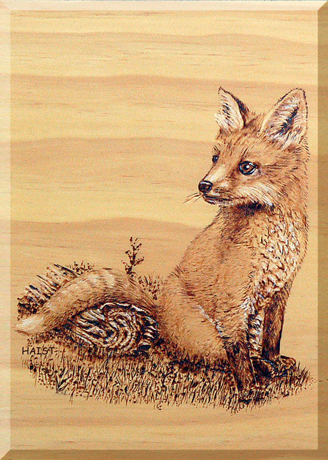 Fox Pyrography - Fox Pup by Ron Haist