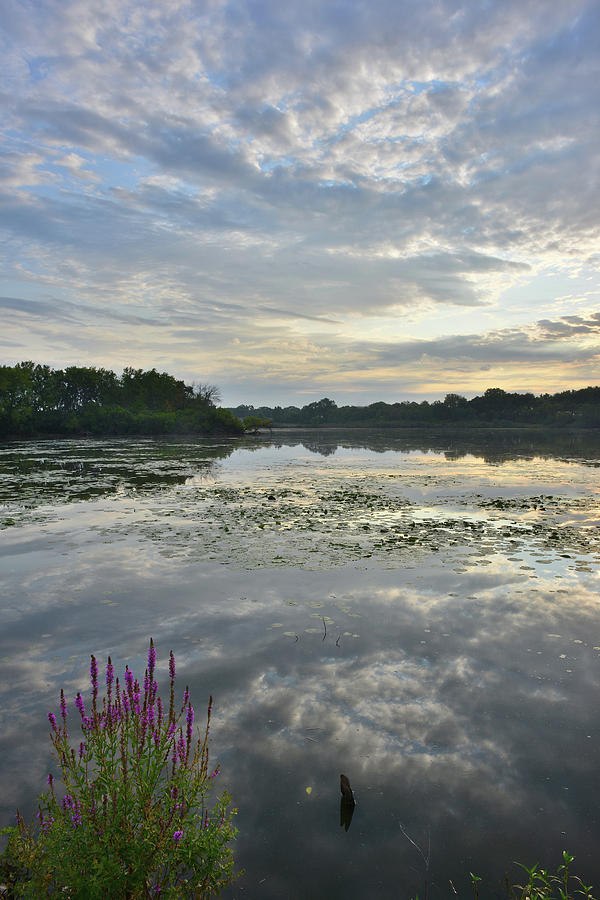 Fox River Sunrise In Mchenry Photograph