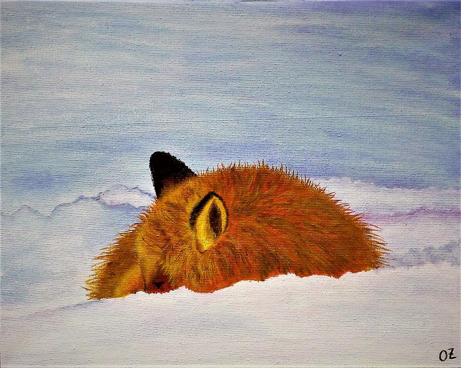Fox sleeping in snow by Olga Zavgorodnya