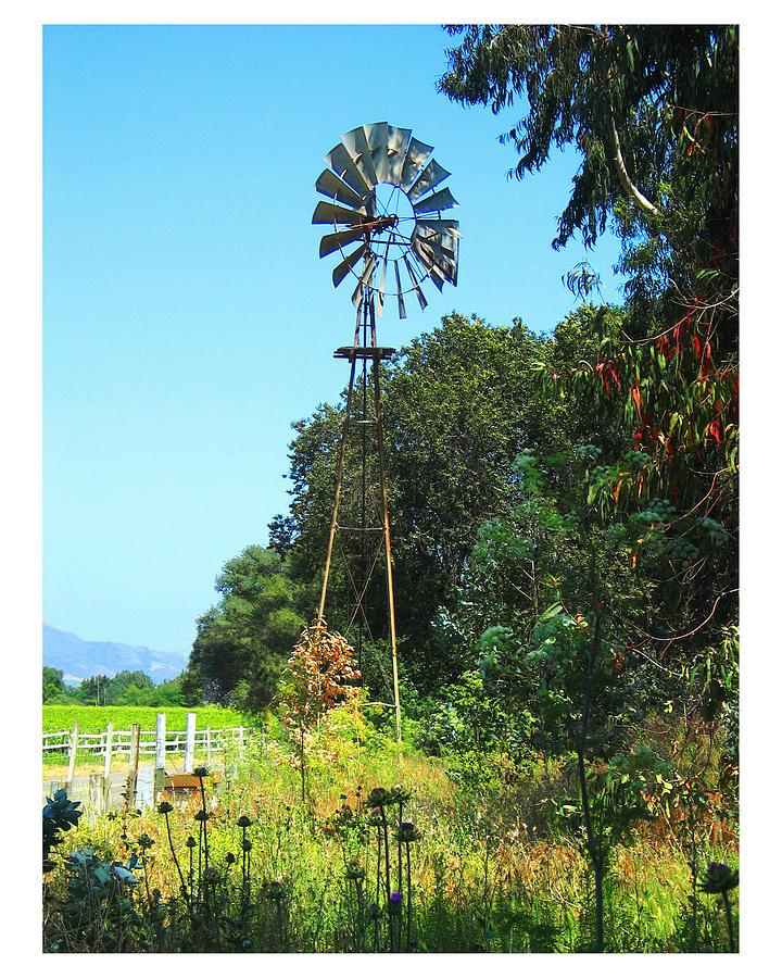 Landscape Photograph - Foxen Adobe Windmill by Deborah Hildinger